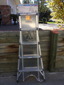 Mastercraft aluminum ladder