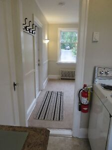 Newly renovated bachelor apartment in quiet building