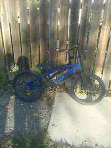 Blue bmx for 10 bucks