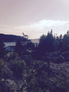 Beautiful 1/2 acre lot in Salmonier St. John's Newfoundland image 3