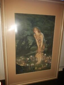 Beautiful Framed Fairy Picture