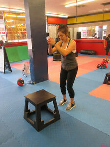 Fitness Classes on Ottawa street Windsor Region Ontario image 10