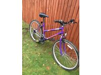 18 gear ladies bike, great condition