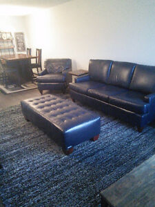 Beautiful Leather Living Room Set