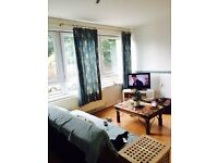 3 BED PURPOSE BUILT FLAT: LOWES WATER HOUSE SOUTHERN GROVE MILE END E3 4PY (NO DSS CALLS)