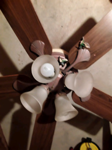 Ceiling fans with lights ( 2 )