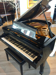 STEGLER Grand Piano - Outstanding sound & touch for price