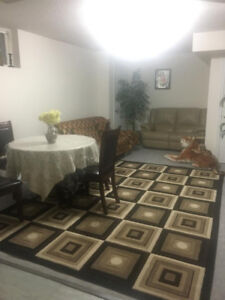 Furnished Basement apartment in Richmond Hill