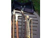 Selection of shooting sticks