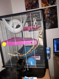 cage rats, rongeur, lapin, furet, etc toute équipée