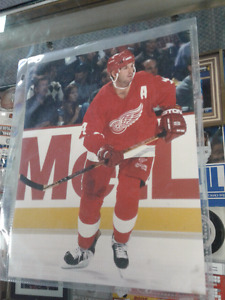 Brendan Shanahan Detroit Red Wings authentic 8 x 10  photo