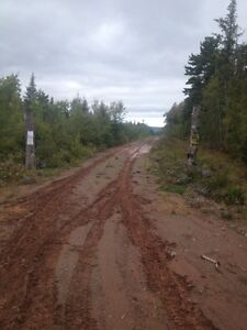 41 acres wood lot to trade for equal value unit