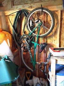 Girafe remorque Trek Mountain Train Trail-a-Bike