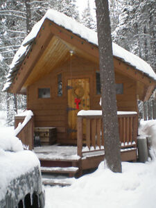 Apex Resort Ski Cabin
