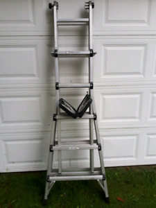 Extention, Step and Scaffold ladder