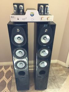 Audiophile Dared Tube Amplifier And Energy speakers
