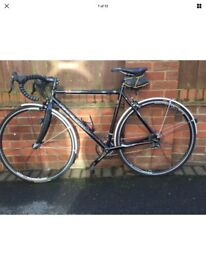 Kinesis Racelight 54cm frame Winter Bike with Campagnolo Xenon gear with mudguards