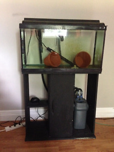Fish Aquarium Tank with Stand