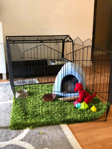 Bunny cage with play pen attachment