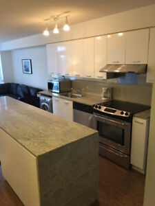 1 bedroom condo at Leslie and Sheppard