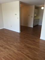 2 Bedroom apartment in Stratford new appliances and renovated