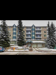 condo for rent downtown st albert