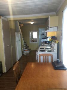 Appartement grand 3 1/2 à louer 350$/mois 450-271-3046