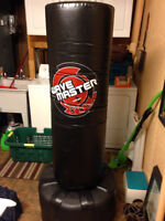Century Wave Master XXL Punching Bag for Sale