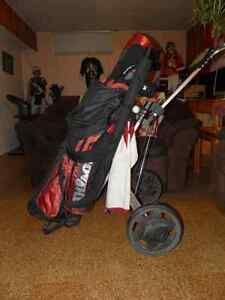 Matched Wilson Golf Set with Golf Cart and other goodies. Edmonton Edmonton Area image 4