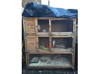 Rabbit/ferret cage for sale