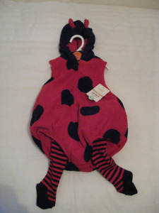 Two Piece 18 Month Ladybug Outfit