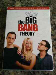 The big bang theory saison 1 season