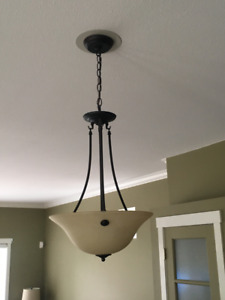Large Pendant Light (Bronze finish)