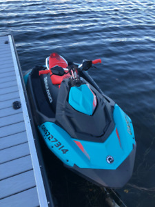 2017 Seadoo Trixx with Trailer and PWC Lift
