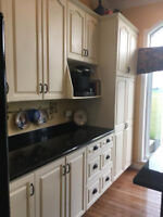 20 % OFF Kitchen Cabinet Painting