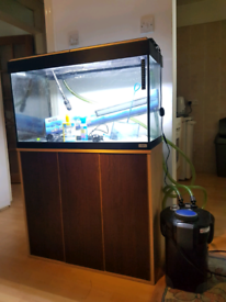 Fluval Roma 125 liter fish tank and Stand For Sale full set up