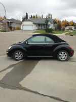 2003 Volkswagen New Beetle GLS Coupe (2 door)
