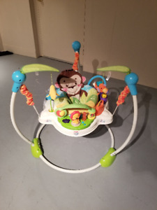 Fisher Price Precious Planet Jumperoo