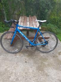 Road Bike - Commute Bike - City Bike - Carrera