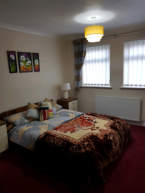 Room to Rent £350/Calender Month
