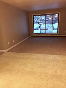 Millwoods 1 Bedroom Apartment-Dec & Jan Rent Free!