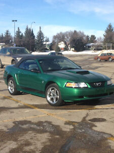 Must Go!! 1999 Ford Mustang Convertible