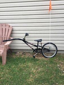 Girafe pour vélo avec DEUX fixations pour vélos d'adultes