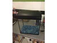 Small fish tank in great condition