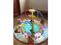 Fisher Price Precious Planet Tri Arch Play Gym