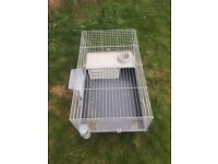Guinea pig/young rabbit cage
