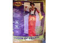 Queen of hearts fancy dress costume size 8