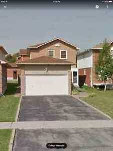 Detached House and Basement Apartment  Near 404- Newmarket