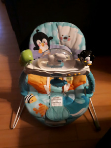 Fisher price baby's bouncing seat