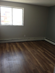 Condo Apartment For Rent in Millwood